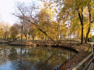 Parco Buzzaccarini